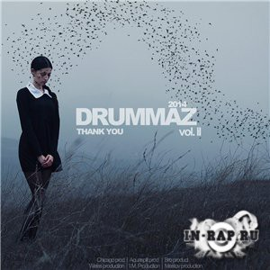 Drummaz - The Invasion Vol. 2 (2014)